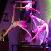 Poledancetokyo_DianaChiharuChikage02