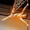 poledancetokyo_Antoine-Soulat